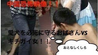 getlinkyoutube.com-【中国衝撃映像】レンガで叩き ◎されそうになる愛犬を必死に守るおばさん