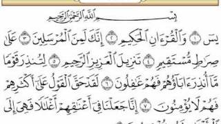 getlinkyoutube.com-سورة يس  بصوت الشيخ نايف السالم تراويح رمضان لعام 1431