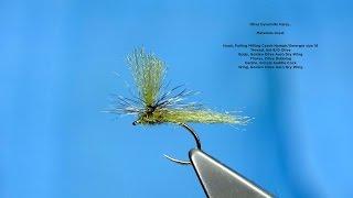 getlinkyoutube.com-Tying the Olive Dynamite Harry with Davie McPhail