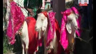 प्रियंका,दीपिका और कैटरीना ने चुना अपना जीवनसाथी