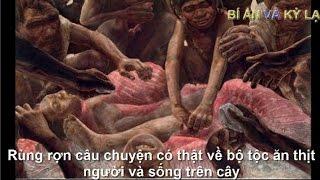 getlinkyoutube.com-Rùng rợn câu chuyện có thật về bộ tộc ăn thịt người và sống trên cây - Được ghi lại bằng camera.