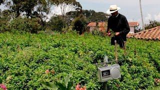 getlinkyoutube.com-Cómo Trabaja un Floricultor - TvAgro por Juan Gonzalo Angel