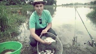 getlinkyoutube.com-Wędkarstwo gruntowe-rzeczny feeder [Odra]