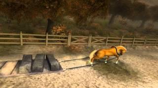 getlinkyoutube.com-Epic Horse Game of Doooooooooooooom!