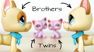 LPS: Together With a Twin?