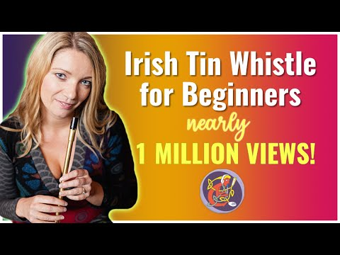 Beginner Irish Tin Whistle | Free Lesson No.1 of 6: Hand and Finger positioning - D maj Scale