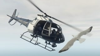 getlinkyoutube.com-ボツ【GTA5リクエスト編】バードストライク!!・動物になって武器屋に突入!!