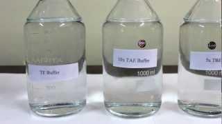 getlinkyoutube.com-Preparation of Buffer stocks (TBE, TE and TAE) - Amrita University
