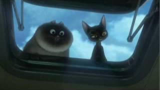 getlinkyoutube.com-Bolt - Cat Tales Clip