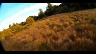 getlinkyoutube.com-Tuning luxfloat. SRD250 FPV racing drone.