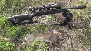 getlinkyoutube.com-Rimfire Rabbits 22lr 118 yard HEAD SHOT! CZ 452