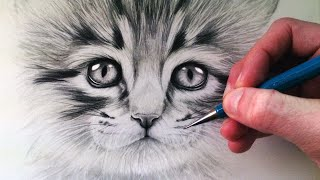 getlinkyoutube.com-How to Draw a Kitten