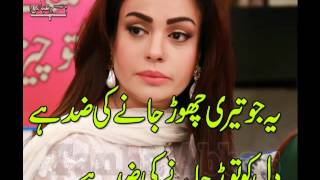 New Nazam Urdu Poetry - Tanha Abbas - Voice Rj Bakhtiar - Sad Love Poem - New Peom
