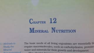 Ch 12 Mineral Nutrition Class 11 Ncert (reading only) biology
