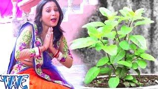 तुलसी माता के भजन को सुनकर जीवन पवित्र बनाये - Subha Mishra - Tulsi Mata Bhajan 2017