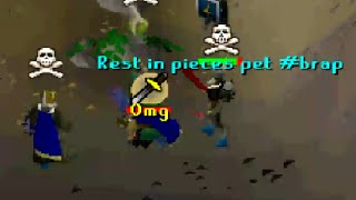 getlinkyoutube.com-Rip Scorpia Pet