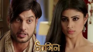 Naagin 17th November 2015 EPISODE | Shivanya BITES Viren width=