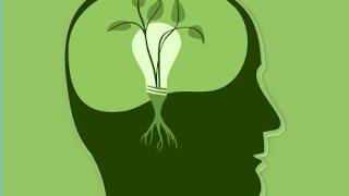 Mindset Monday! What is mindset? 10/19/15