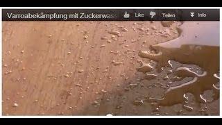 getlinkyoutube.com-Varroabekämpfung mit Zuckerwasser 20.10.12