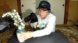 getlinkyoutube.com-花をマクロ撮影してみよう