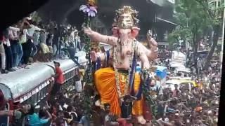 getlinkyoutube.com-Lalbaugcha Raja Aagman 2016 | 1000 People Dancing on Zingaat Song | Sairat Movie