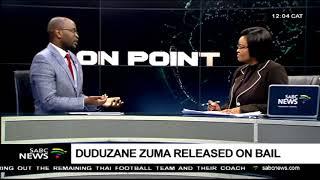 Duduzane Zuma released on bail width=