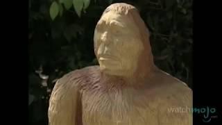getlinkyoutube.com-Top 10 Unexplained Phenomena: Mysteries