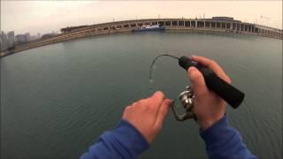 getlinkyoutube.com-Chicago perch fishing (Navy Pier)