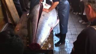 getlinkyoutube.com-Japanese Cutting BIG Tuna in the Streets of Tokyo JAPAN