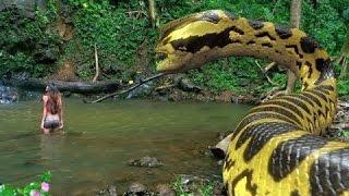 Anaconda 3   Filme de terror Dublado Excelente   Em HD 720p