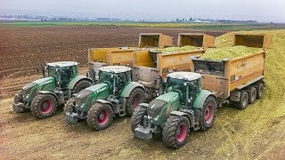 getlinkyoutube.com-CLAAS JAGUAR 980 häckseln Mais | FENDT TRACTORS | AgrartechnikHD