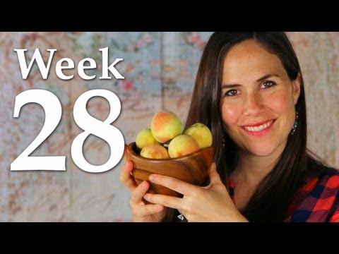 My Pregnancy @ 28 Weeks + Belly Shot