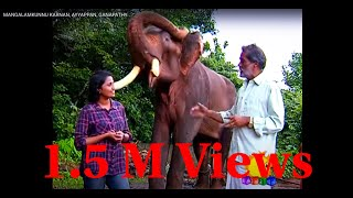 getlinkyoutube.com-MANGALAMKUNNU KARNAN, AYYAPPAN & GANAPATHYKOCHU TV ME & MY PET