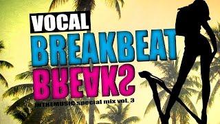 getlinkyoutube.com-Vocal Melodic Breakbeat Mix