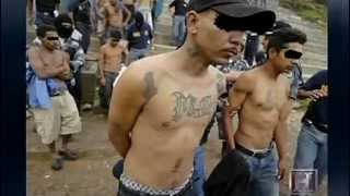 getlinkyoutube.com-MS-13 - Root Of All Evil