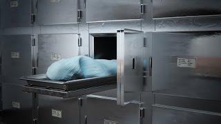 getlinkyoutube.com-CELEBRITY CAUSE OF DEATH (PART #6)