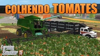 getlinkyoutube.com-Farming Simulator 2015 - Colhendo Tomates