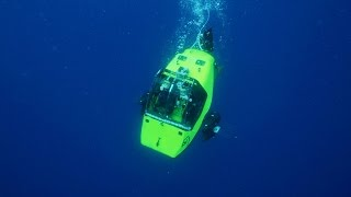 Submersible Finds Sharks in a Kill Zone width=