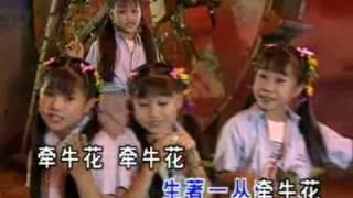 getlinkyoutube.com-四千金-牽牛花