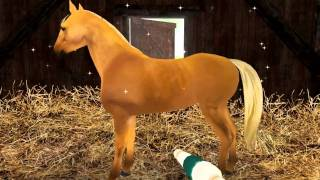 getlinkyoutube.com-Planet Horse Free video game to download for PC and Mac