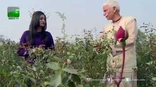 getlinkyoutube.com-Cash Crops (Nakadi Fasalein): Rose Farming - Full Episode