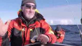 getlinkyoutube.com-Eidesstattliche gefischt Heilbutt 195 Kg gefilmt Unterwasser !!!