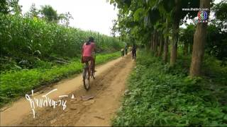 getlinkyoutube.com-ทุ่งแสงตะวัน -  นาต้นจั่น อ.ศรีสัชนาลัย จ.สุโขทัย ออกอากาศวันที่ 6 กันยายน 2557 TV3 Official