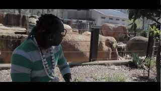 Elephant Man - Harlem Shake