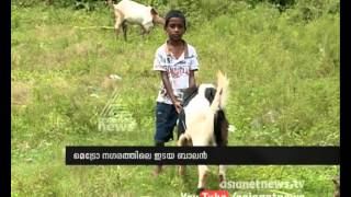 getlinkyoutube.com-Metro Shepherd | Asianet News Special Video