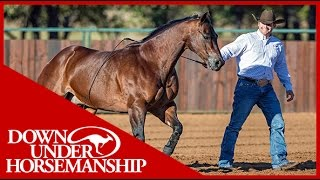 getlinkyoutube.com-Clinton Anderson: How to Begin Liberty Work at the Ranch Rally - Downunder Horsemanship