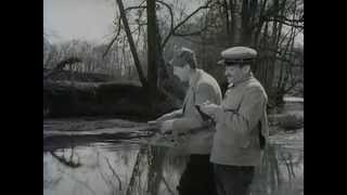 getlinkyoutube.com-louis de funès , bourvil.....à la pêche