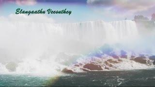 Elangaathu Veesuthey Lyrics width=
