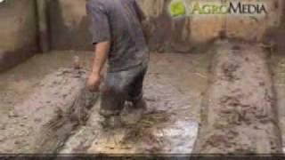 getlinkyoutube.com-Sukses Membibitkan Belut di Lahan Sempit