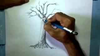 getlinkyoutube.com-video belajar menggambar pohon